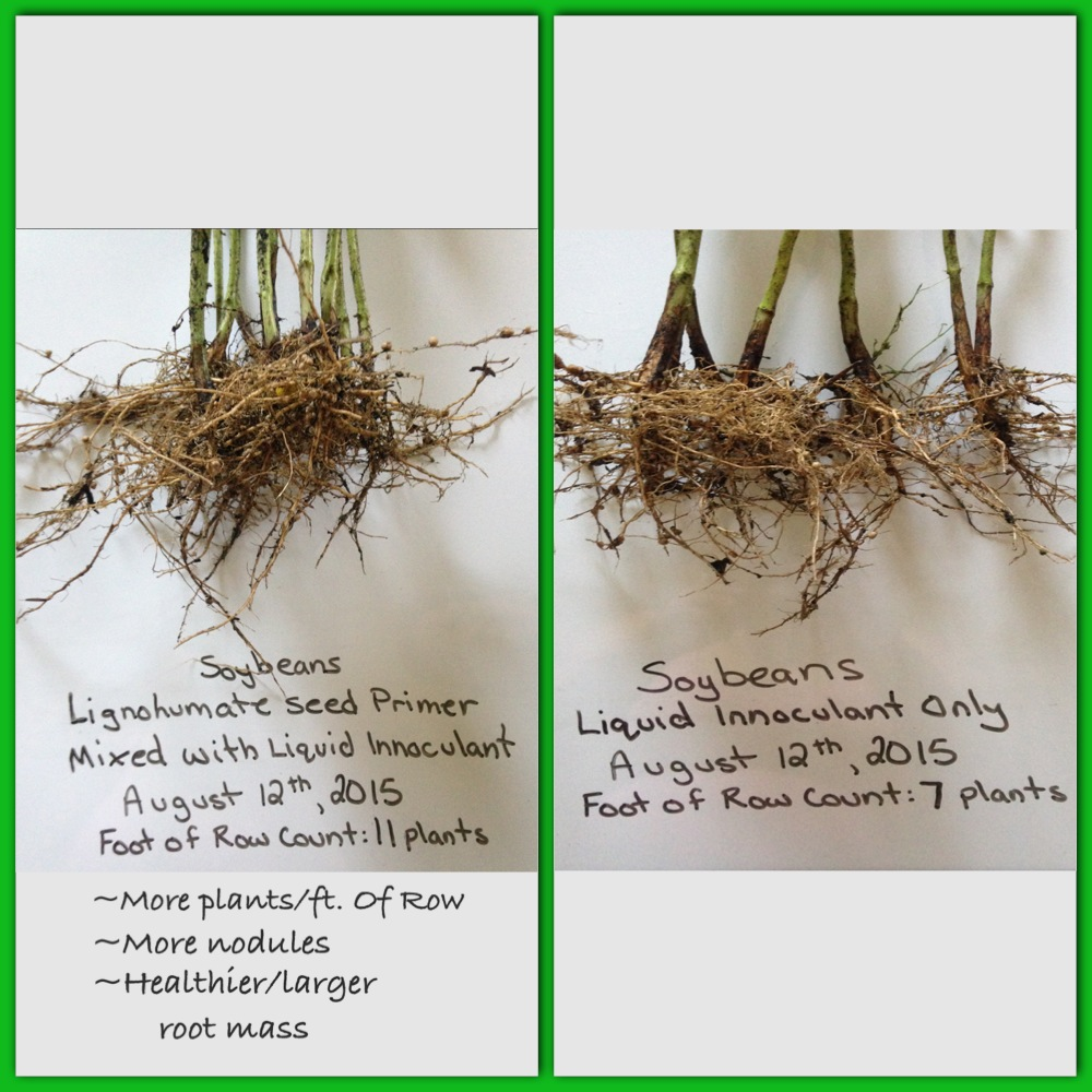 Lignohumate Seed Primer Treatment on Soybeans